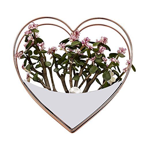 (S WIDEN ELECTRIC Home Innovative Wall Hanging Decoration,Heart-Shaped Characteristic Garden Ornament,Luxurious and Elegant Indoor Flower and Planter Potted)