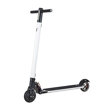Smart Coasting E-Scooter Delight weiß bis zu 22km/h 20km