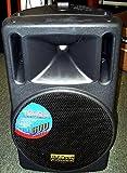 DJTECH T545A 600-Watt Channel Powered Speaker Cabinet