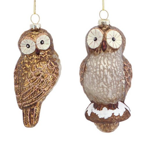 Club Pack of 12 Rustic Lodge Woodland Owl Glass Christmas Ornaments 5