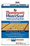 THOMPSONS WATERSEAL 041811-16 Transparent Stain, Gold