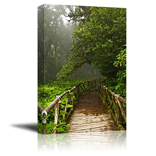 Canvas Prints Wall Art - Rainforest Doi Inthanon in Thailand - 16