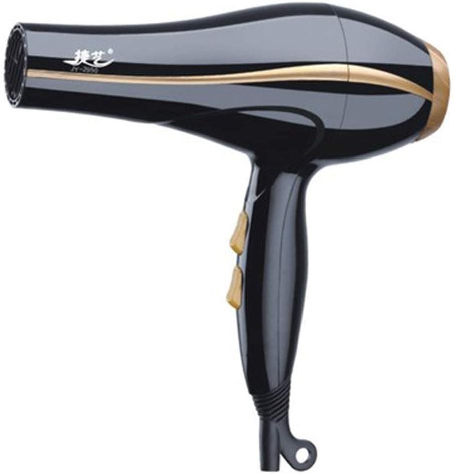 Jsmhh – Cepillo alisador de pelo asavea, secador de pelo profesional de alto rendimiento y aire frío, secador de pelo de iones negativos