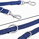 Easy-Tang Hands Free Dog Leash - Double Ended