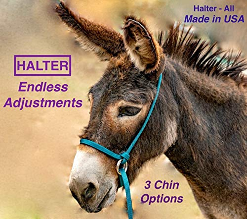 Halter-All Medium Donkey Small Mule Endless Adjustable Halter & Lead USA