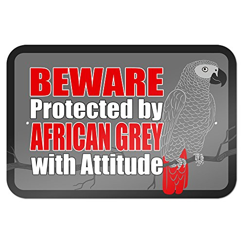 "Beware Protected by African Grey with Attitude 9"" x 6"" Metal Sign"