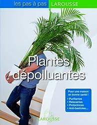 Plantes dépolluantes par Bénédicte Boudassou