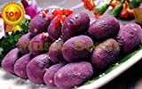 Brand New! 1bag=20pcs purple sweet potato SEEDS bonsai RARE exotic delicious MINI SWEET fruit vegetable seeds home & garden
