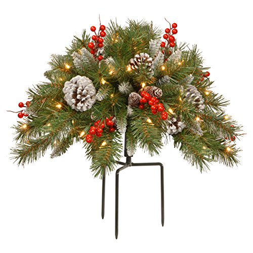 National Tree 18 Inch Frosted Berry Urn Filler with Cones, Red Berries, Tripod Stake and 35 Warm White Battery Operated LED Lights with Timer (FRB-300-18U-B)