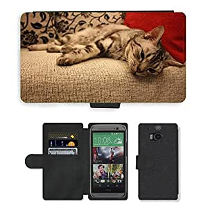 Super Stella Cell Phone Card Slot PU Leather Wallet Case // M00107163 Cat Pets Animal Lazy Lay Sofa // HTC One M8