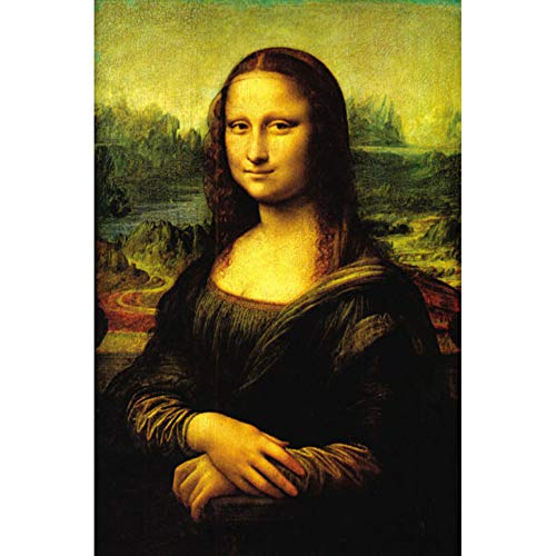 3D Diamond Painting Kit Cross Stitch Embroidery Mona Lisa Square Drill Diamond Embroidery Picture Rhinestone D2327,30x40cm
