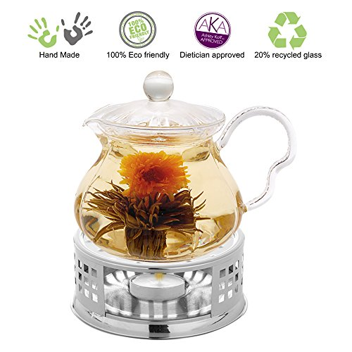 Tea Beyond Glass Teapot Fairy 20 oz with Stainless Steel Tea Warmer Alex No Drop At The Spout Special Lead Free Glass