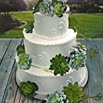 12-Pack-Realistic-Artificial-Succulents-Picks-No-Flocking-for-Eucalyptus-Foliage-Garlands-Wedding-Cakes-and-Tablescapes-Floral-Bouquets-and-Centerpieces