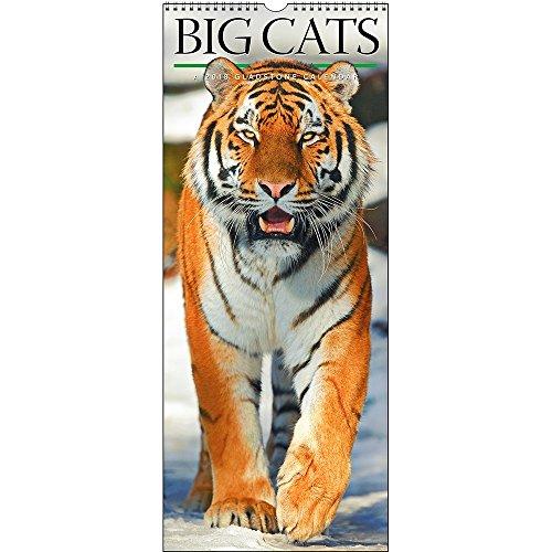 Cheap 2019 Big Cats Calendar for cheap