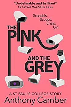 The Pink and the Grey (English Edition) por [Camber, Anthony]