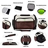 UTOPIPET Premium Airline Approved Large Pet Carrier Comfortable Breathable Soft dog backpack carrier with Safety Strap & Buckle Support Designed For Travel, Hiking & Outdoor (Beige-Brown)