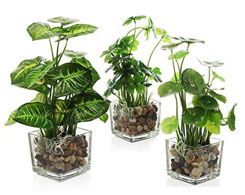 Desk Plant Potted Artificial Plants 3 Pcs Set, Faux Tabletop Greenery Include Clear Glass Pots