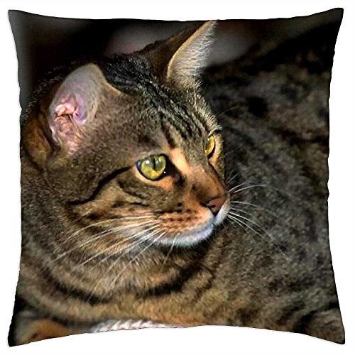 - Louisa Maxine Gray Tabby Cat F - Throw Pillow Cover Case (18
