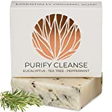 Oil Cleansing Eczema - Eucalyptus Tea Tree Hemp Soap Bar with Peppermint Leaves | Certified Organic Ingredients, Vegan, GMO Free | Face & Body Wash for Combination and Oily Skin, Acne, Eczema