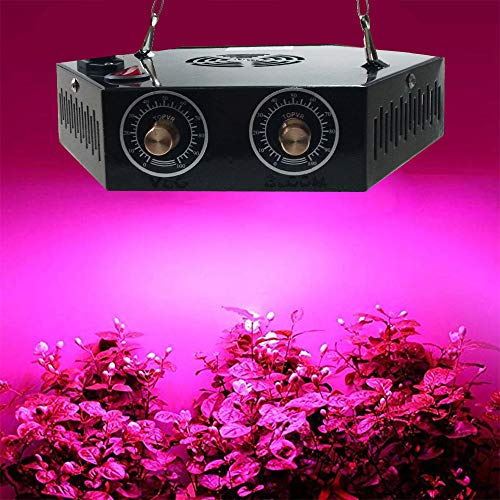 1000W LED Grow Light for Indoor Plant, Adjustable Full Spectrum Plant Light Growing Lamps with Veg and Bloom for Basement Planting.