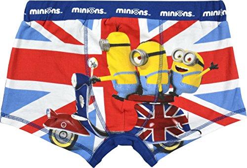 Minions Boxershorts England, mehrfarbig
