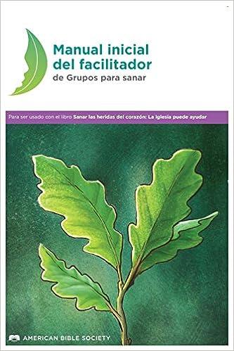 Manual inicial del facilitador de Grupos para sanar: Sanar las ...