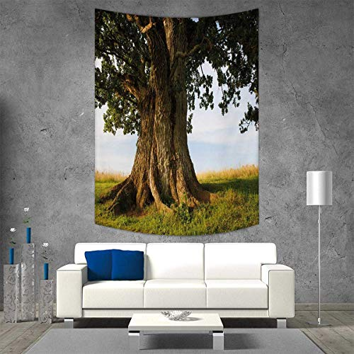 smallbeefly Nature Tapestry Wall Tapestry Majestic Oak Tree on Grass Estonia Northern Europe Rural in Summer Landscape Art Wall Decor 60W x 91L INCH Cocoa Fern Green