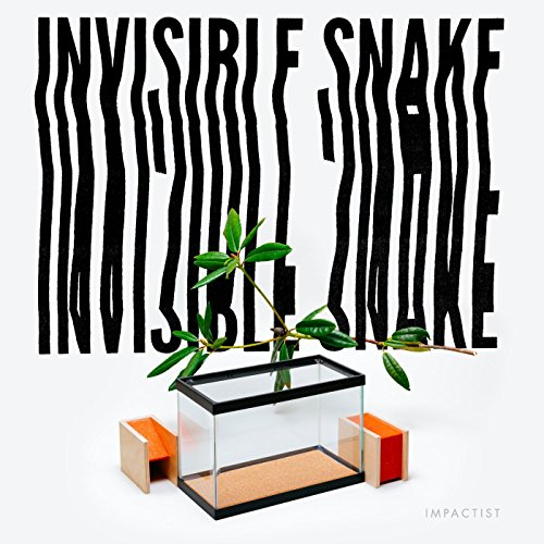 Invisible Snake