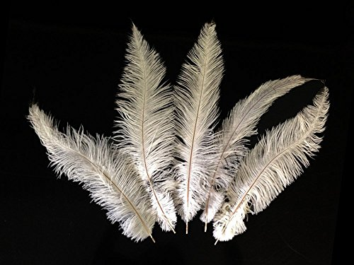 Price comparison product image Moonlight Feather | 1/2 lb - Off White Mini Spads Ostrich Wholesale Chick Body Feathers (bulk) Costume Halloween Wedding Craft Supplies