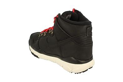 buy popular 102a4 ac7bb Nike SB Dunk High Boot Mens Hi Top Trainers 806335 Sneakers Shoes (UK 5.5 US  6 EU 38.5, Black sail ale Brown 012)  Amazon.ca  Shoes   Handbags