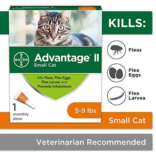 Bayer Advantage II Flea Prevention for Small Cats, 5-9 lbs