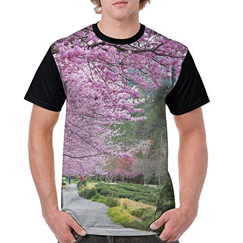 ZhiqianDF Mens Beautiful Sakura Garden In Wuling Farm Taiwan Classic Outdoor Black T-Shirts M Short Raglan - Family Pack Sixers
