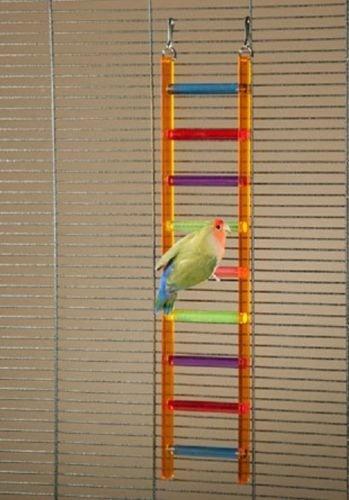 Prevue Acrylic Bird Ladder