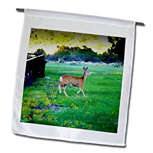 Jos Fauxtographee Realistic - A deer running across the grass in a yard in Pine Valley, Utah - 18 x 27 inch Garden Flag (fl_64580_2)