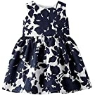 Carter's Baby Girls' Sateen Dress (Baby) - Navy Floral - 9 Months