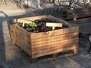 Caja de madera para cultivo de plantas de verduras y 200x 200x 80con selbstsichernden ruedas–Madera de castaño–Mesa grosor 4/5cm