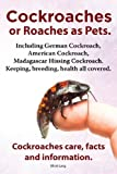 Cockroaches As Pets. Cockroaches Care, Facts and Information. Including German Cockroach, American Cockroach, Madagascar Hissing Cockroach. Keeping, B, Elliott Lang, 1909151688