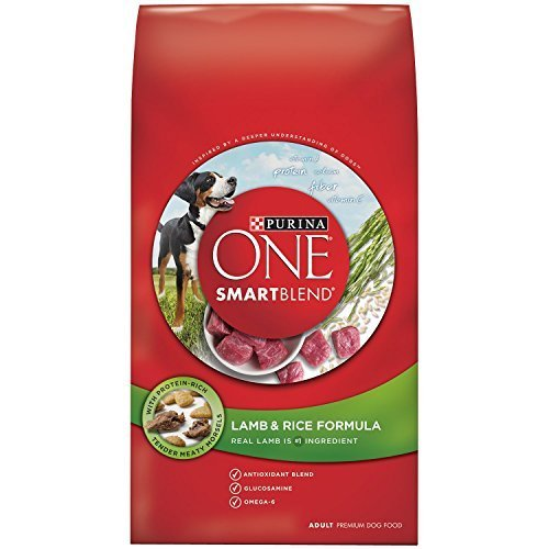 migliore qualità Purina Purina Purina O.N.E. 178538 One Puppy Lamb Rice Food, 16.5-pound by Phillips feed & Pet Supply  vendita online