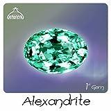 Alexandrite 1st Gem