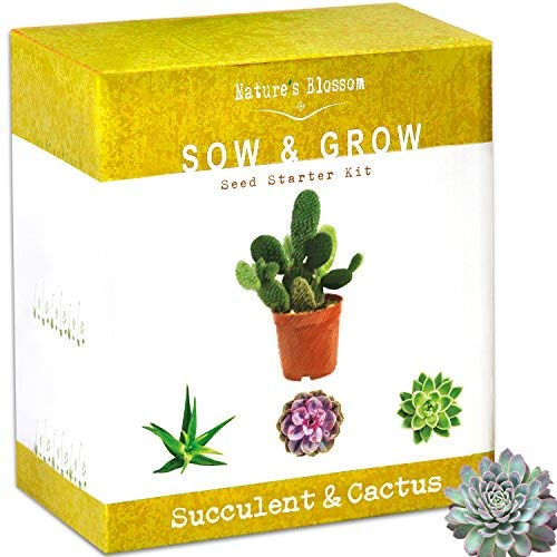 (Nature's Blossom Succulent & Cactus Growing Kit. A Complete Set to Grow Succulents & Cacti Plants from Seed. Planting Pots, Organic Soil & Gardening Guide Included. Indoor Garden Gift for Men & Women)