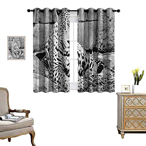 Warm Family Black and White Patterned Drape for Glass Door Jaguar Wild Big Cats Theme Feline with Dots Body Fur Jungle Tiger Leopard Waterproof Window Curtain W72 x L45 Black White