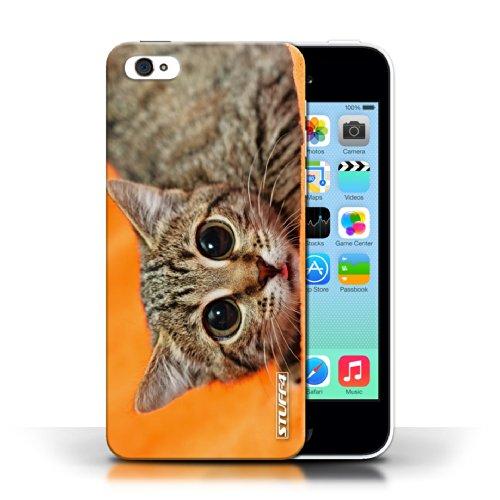 iChoose® Print Motif Coque de protection Case / Plastique manchon de telephone Coque pour Apple iPhone 5C / Collection Animaux comiques / Chatonne surprise