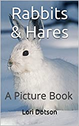 Rabbits & Hares: A Picture Book