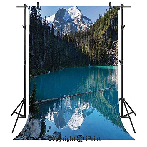 Lake House Decor Photography Backdrops,Lake in Northern Canada with Slim Trees and Snowy Frozen Mountain Novelty Photo,Birthday Party Seamless Photo Studio Booth Background Banner 6x9ft,Blue White Gre -