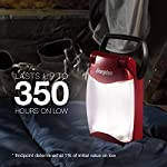 Energizer-Waterproof-LED-Lantern-Weatheready-Folding-Light-350-Hour-Run-Time-500-Lumens