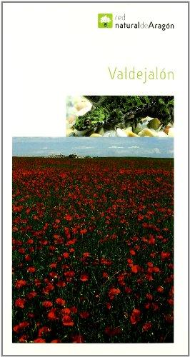 Descargar Libro Valdejalon Raquel (coord.) Egea Garcia