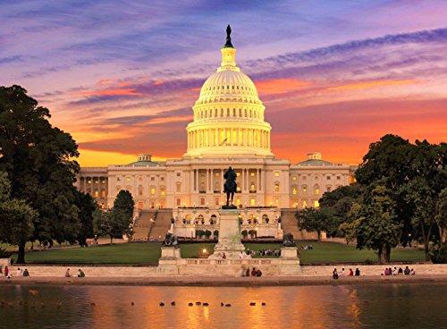 Adult Jigsaw Puzzle United States Capitol Building Washington  D C 500 Pieces
