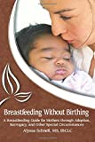 Breastfeeding Without Birthing: A Breastfeeding Guide for Mothers through Adoption, Surrogacy, and Other Special Circumstances