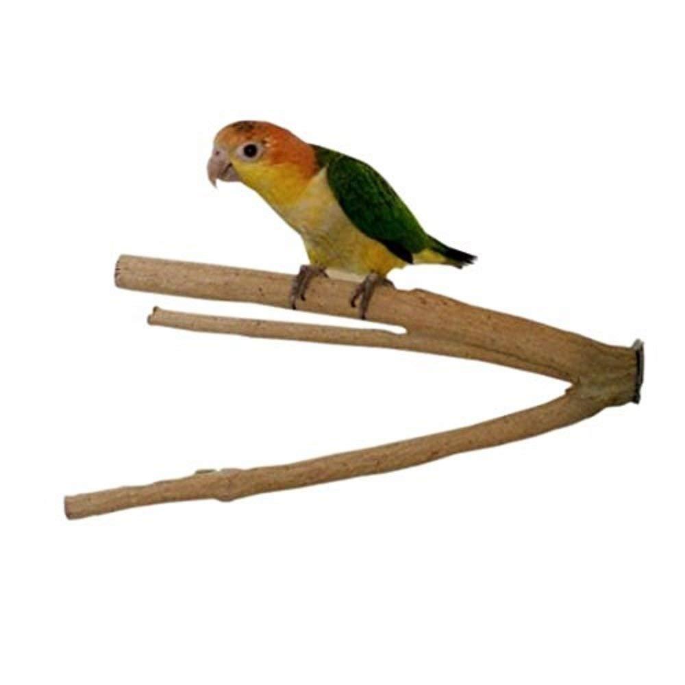 Birds LOVE Medium Bottlebrush Cage Perch by Birds LOVE