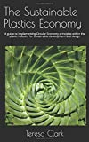 img - for The Sustainable Plastics Economy: A guide to implementing Circular Economy principles within the plastic industry for sustainable development and design book / textbook / text book